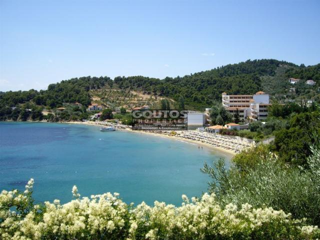 Апартаменты в греции отдых отзывы